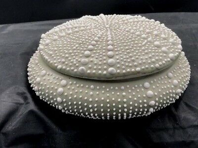 7 inch fine porcelain lidded box in the shape of a sea urchin unmarked dove grey