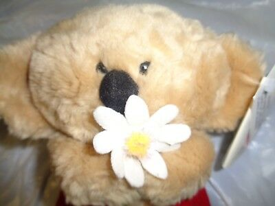 Nwt vintage koala bear plush 10 soft stuffed animal toy brown tan vintage american greetings boomerang koala bear with daisy flower new w tags m4hsunfo
