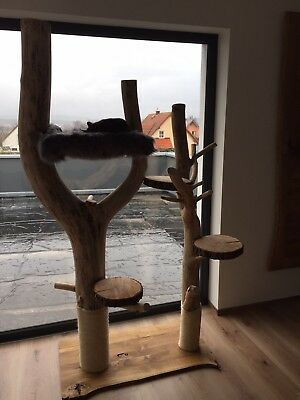 xxl katzenkratzbaum kratzbaum katze holz natur baumstamm mit h ngematte eur picclick de. Black Bedroom Furniture Sets. Home Design Ideas
