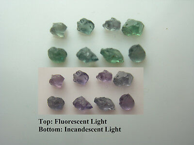 rare ALEXANDRITE rough 1.00ct 8 piece gemmy Russia gem Color Change Green Purple