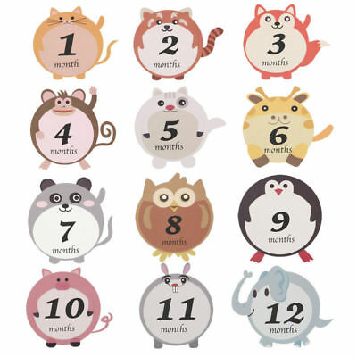 12 pcs Baby Stickers for First Year Boy/Girl 1-12 Month Milestone Belly Stickers