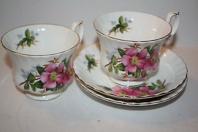 2 Sets of Royal Albert England Prairie Rose Teacup and Saucer