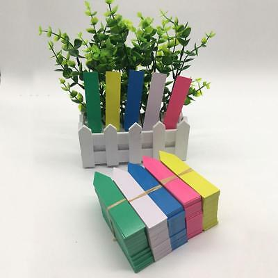 100pcs Easy Plastic Plant Labels Garden Stake Seed Label Tags 5x1cm Pot Marke