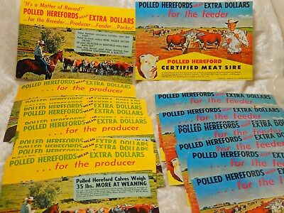 Vtg Lot of 24 Cattle Postcards Polled Herefords Extra Dollars for the feeder