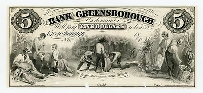 1800's $5 The Bank of Greensborough, GEORGIA *PROOF* Note