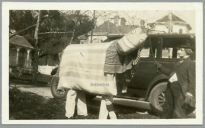 #86 A Horse of a Different Color! Costume, Mask, Woman, Car, Vintage Photo