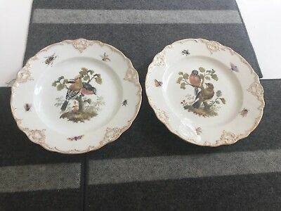 """SET of 2 ANTIQUE 8 3/4"""" Meissen Porcelain BIRD & INSECT PLATES in MINT CONDITION"""