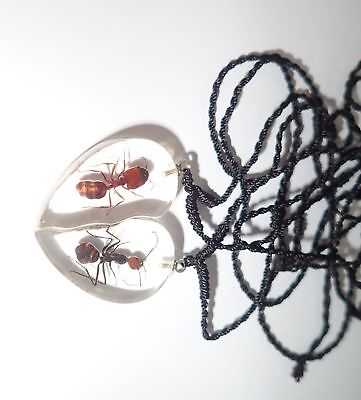 Valentine Pair Necklace Big-Head & Red Head Bow Ant Heart Shape Clear