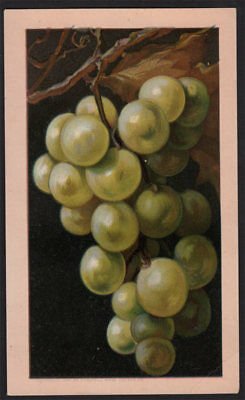 Arbuckle's Ariosa Coffee VTG Victorian Trade Card Cooking Grapes Recipe Wine #39