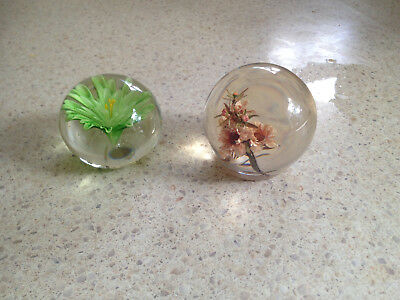 2 X Real Flowers inside glass paperweights