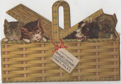 Cats & Dogs in Picnic Basket Die Cut Chas Kingsley Utica NY Adv Trade Card c1880