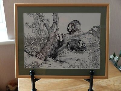 Black & White Sketch Print Of Three Badgers In Frame.