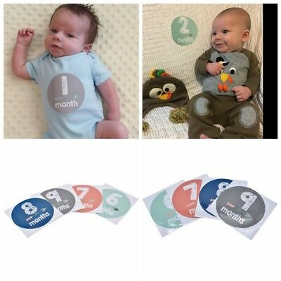 12pcs Baby Girl Boy Infant Monthly Stickers Newborn Party Shower 1 to 12 Months