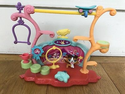 Littlest Pet Shop LPS Tricks & Talents Show Set, original pieces, Collie Dog 237