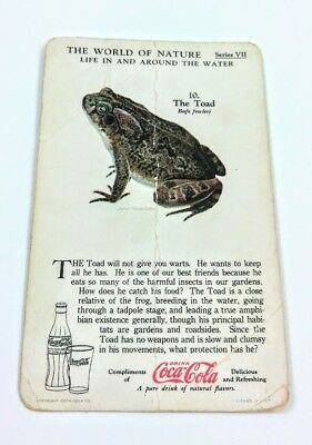 1930 Coca Cola~The World of Nature~Life In,Around Water~#10 The Toad~Series VII