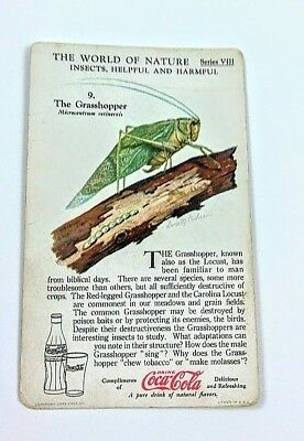 1930 Coca Cola~The World of Nature~Insects Helpful,Harmful~#9 Grasshopper~Ser. 8