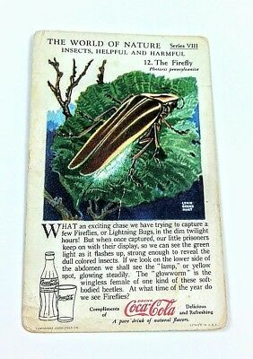 1930 Coca Cola~The World of Nature~Insects Helpful,Harmful~#12 Firefly~Series 8