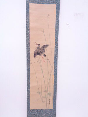 3606277: Japanese Wall Hanging Scroll / Hand Painted / Bird
