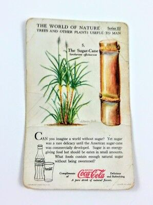 1930 Coca Cola~The World of Nature~#5 Sugar-Cane~Series 3 Trees, Useful Plants