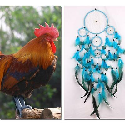 Handmade Car Blue Dream Catcher Circular With feather Wall Hanging Decor Gift