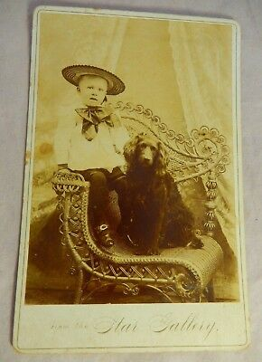 Antique 1900s Cabinet Photo Boy in Hat w/ Dog Spaniel from the STAR GALLERY