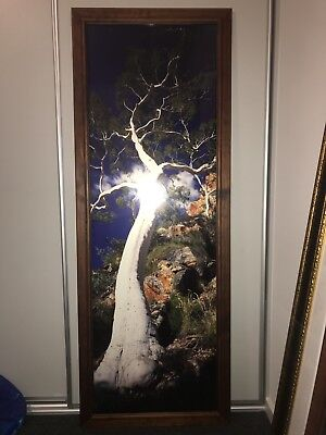 Peter Lik Limited Edition Ghost Gum signed 4/100