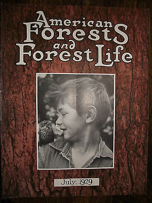 1929 July ~ American Forest Magazine ~ American Foresty Association ~ Very Nice