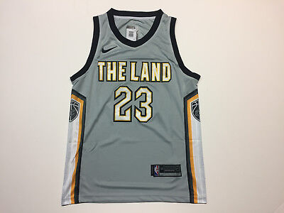 Lebron James  23 Cleveland Cavaliers The Land Gray Men s Jersey Brand New b504cbfd4