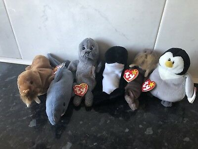 Tu Beanie Babies Bundle - Slapshot, Waves, Jolly, Slippery, Crunch & Paul - New