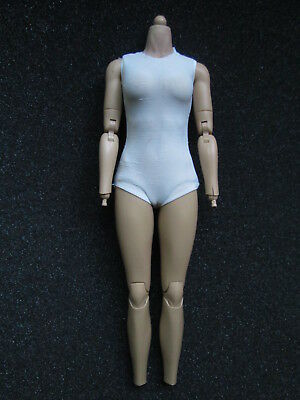 1:6 Scale HOT TOYS MMS188 Catwoman Selina Kyle - Female Body
