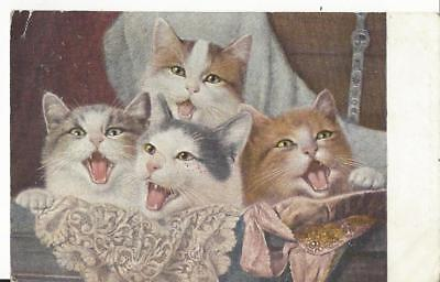 Four Pretty Cats With Their Mouths Wide Open! Singing? 1904 Postcard