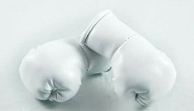 Plain colour Mini Boxing gloves white