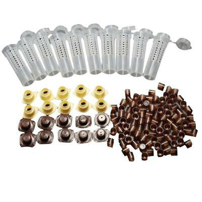 Complete Queen Rearing Cupkit System Bee Beekeeping Catcher Box & 100 Cups Cell