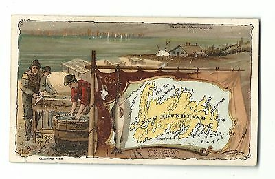 1889 Trade Card Arbuckle Coffee New Foundland #77 Correct Map Cleaning Fish