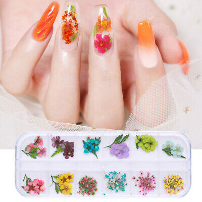 3D Dried Flowers Nail Art Decoration Lovely Five Petal Flowers Manicure DIY Tool