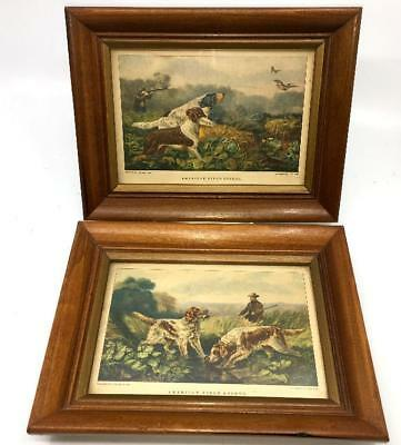 Pair Dogs Spaniel Duck Hunting Rifle  Prints Vtg Currier Ives Framed Cabin Decor