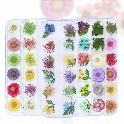 Mixed 3D Dry Flowers Nail Art Decoration Preserved Flower Nail Stickers Decals