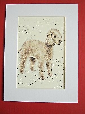 "BEDLINGTON TERRIER DOG MATTED PRINT 6 x 8"" WATERCOLOR PRINT ART PICTURE"