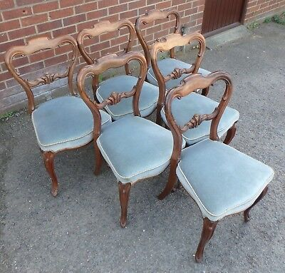 Set 6 Victorian antique carved solid rosewood French Rococo style dining chairs