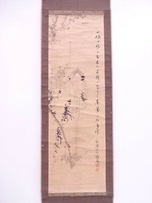 3678070: Japanese Wall Hanging Scroll / Hand Painted / Ume Blossom Artisan Work