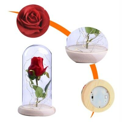 Beauty and the Beast Glass Dome Red Rose on Wooden Base for Valentine's Birthday