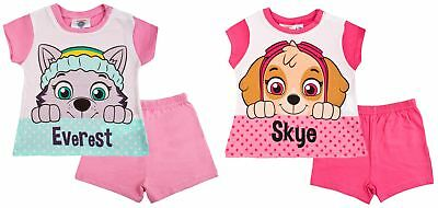 Paw Patrol Baby Girls Short Pyjamas Infants Skye Everest Shortie Summer PJs Size