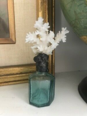 Lace Coral on Antique 1800's Ink Bottle (SB126)