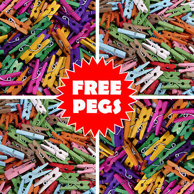 MINI PEGS Mixed Colour 100/50/25 Small 25mm Wood Craft Hang Photo Multi Coloured