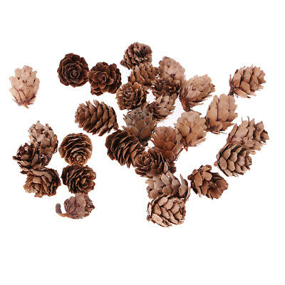 30 Pcs Real Natural Small Pine Cones in Bulk for Accents Decoration Ornament