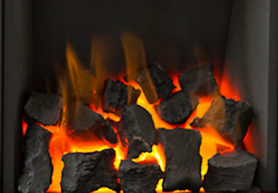 New Any 30 Gas Fire Replacement Coals Only £15.99 Ceramic Coal For A Gas Fire
