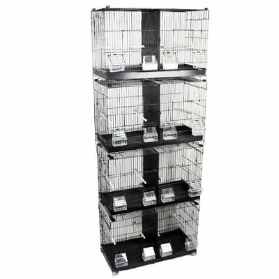 Hickory special edition (black cage) small, large bird accessories Sale price