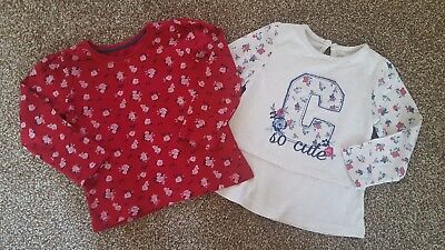 Baby Girls 2x Floral Long Sleeved Summer Tops UK 24-36 & 2-3 Years