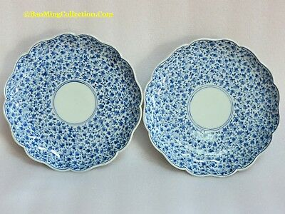 Pair of Japanese Arita Porcelain Dishes of Scrolling Vine: Edo Period 18thC