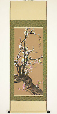 "桜zipang Chinese Hanging Scroll ""White and Reddish Pink Ume Tree""  @n159"